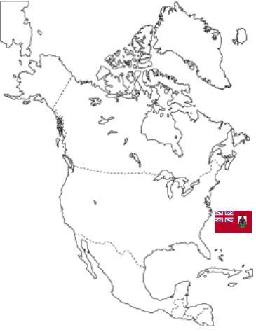 アイランド(北米).jpg