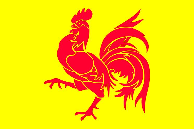 ワロニー国旗.png