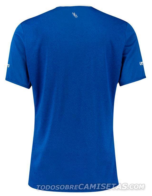 Everton-15-16-umbro-new-home-kit-13.JPG