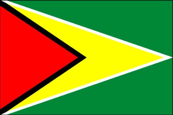 Guyana_Flag.jpg