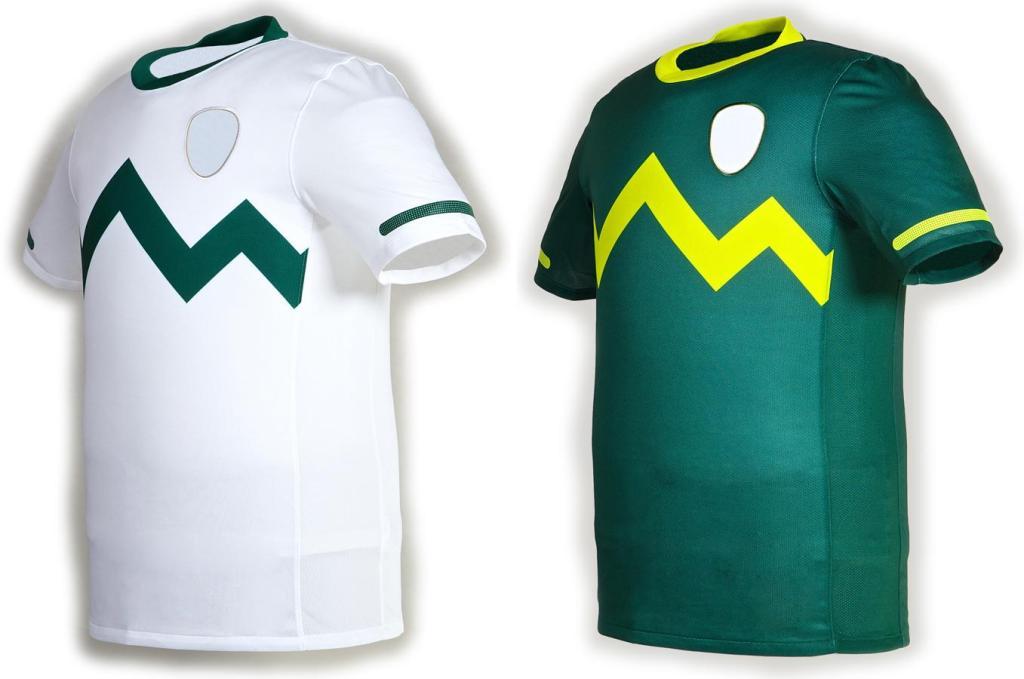 Slovenia-10-11-NIKE-home & away-shirt-designs.jpg